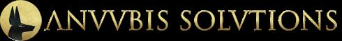 Anuubis-Solutions-Coop-V-empresa-lider-en-Posicionamiento-Web_1
