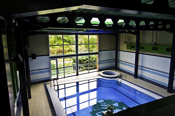 hotel-rosaleda-piscina